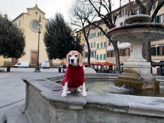 What is the name of this piazza?